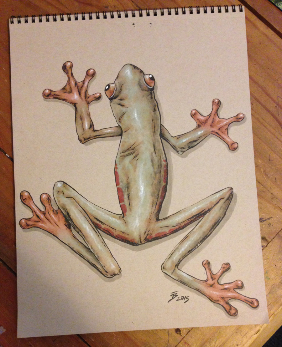 tree frog with Copic markers